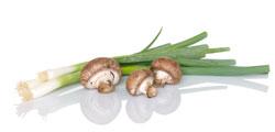 Recipes for cremini mushrooms