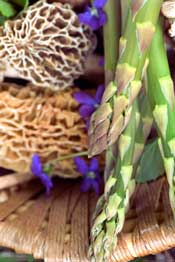 Asparagus recipe for morel mushrooms