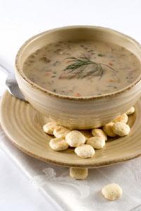 Morel mushroom soup recipe