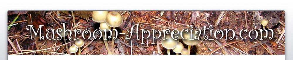 mushroom-appreciation