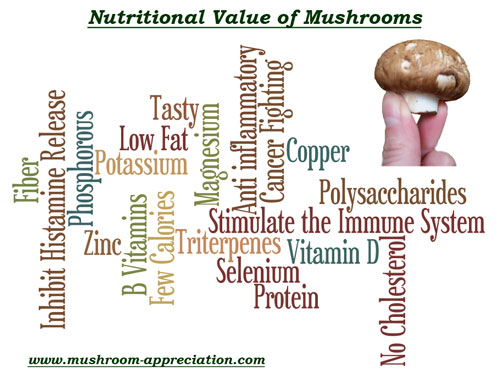 Learn about the nutritional value of mushrooms at www.mushroom-appreciation.com