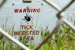 Protect yourself from lyme disease